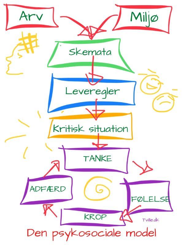 Den psykosociale model